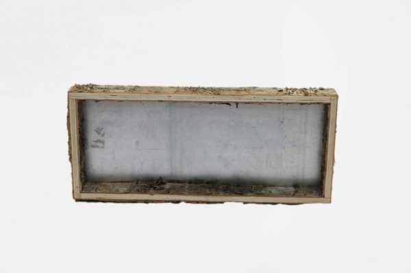 Birch Bark Zinc Tray