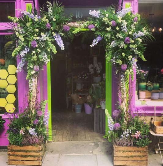 Persephone Violet prop hire - Birch pole square arch